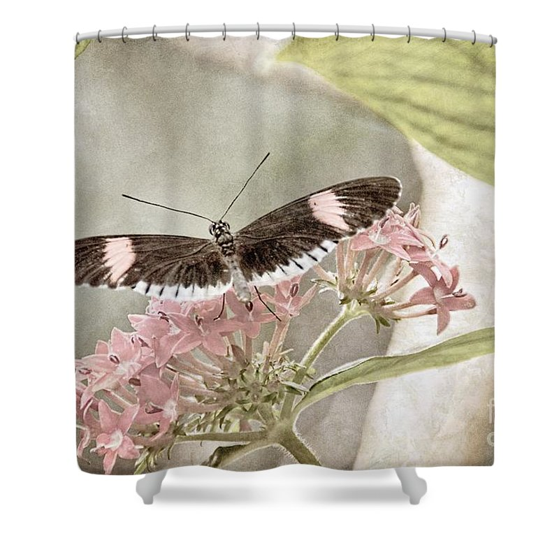 Nature Shower Curtain featuring the photograph Butterfly Whisper by Peggy Hughes