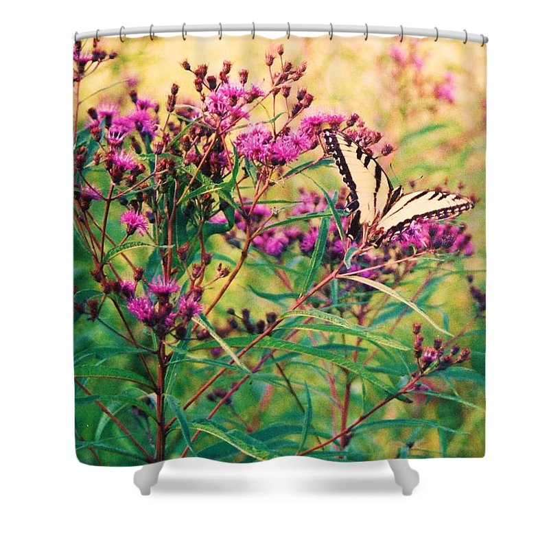 Floral Shower Curtain featuring the painting Butterfly Wildflower by Eric Schiabor
