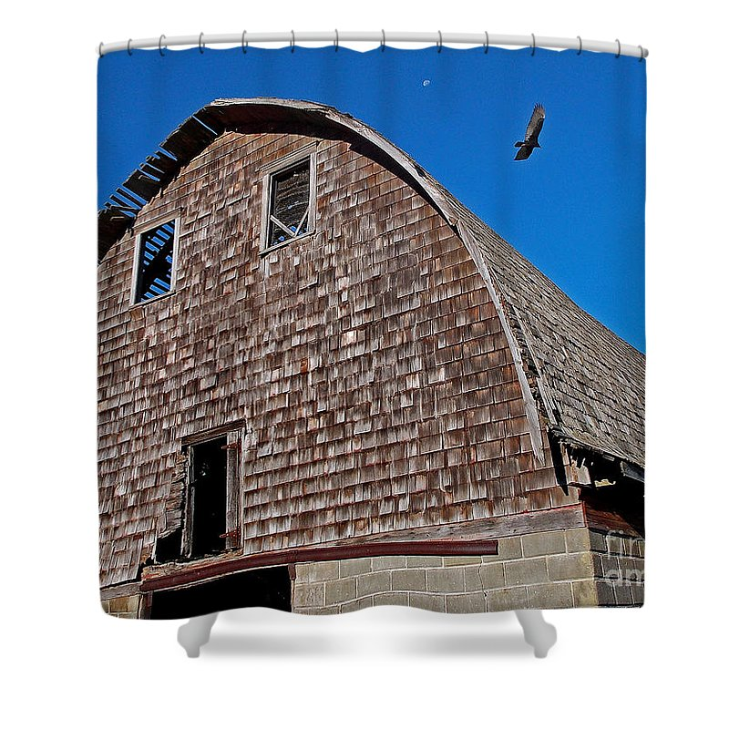 Scenic Tours Shower Curtain featuring the photograph Buzzard Moon by Skip Willits