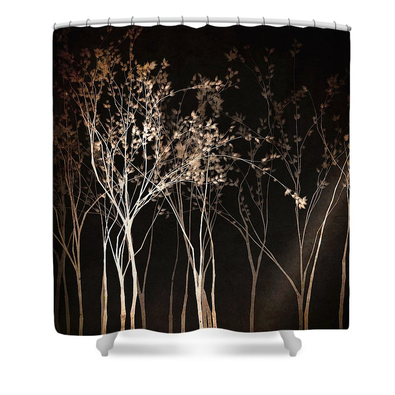 Dark Night Shower Curtains