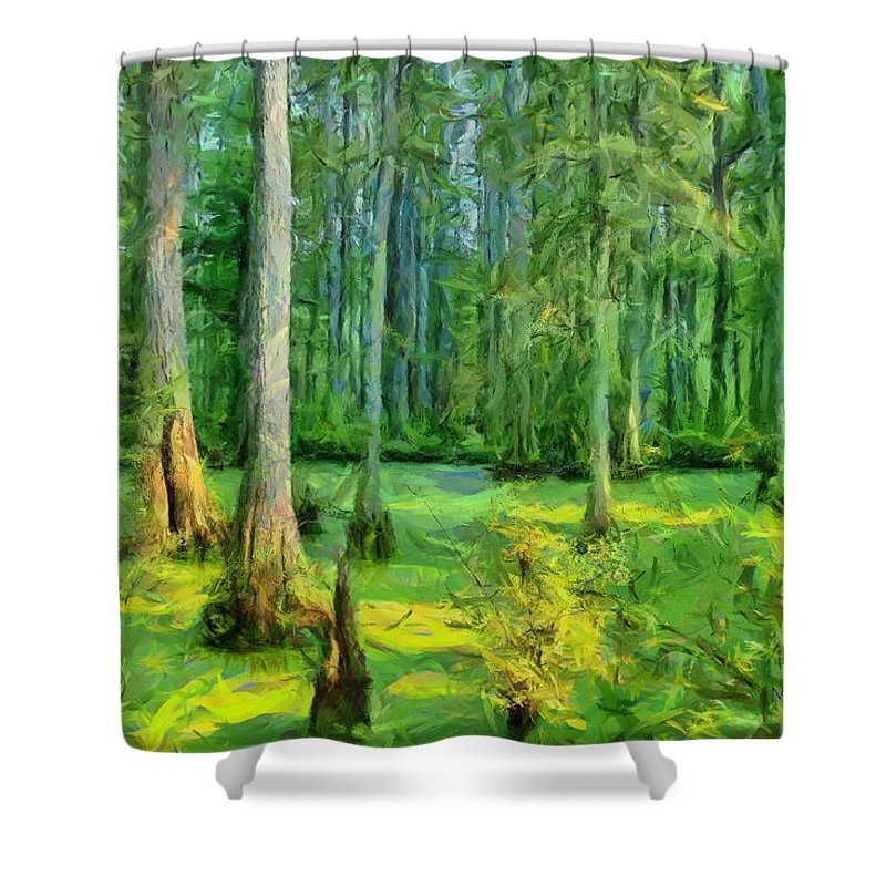 Swamp Shower Curtain featuring the photograph Cache River Swamp by Michael Flood