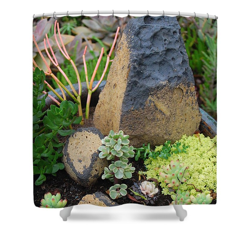 Flower Shower Curtain featuring the photograph Succulent Garden by Amy Fose