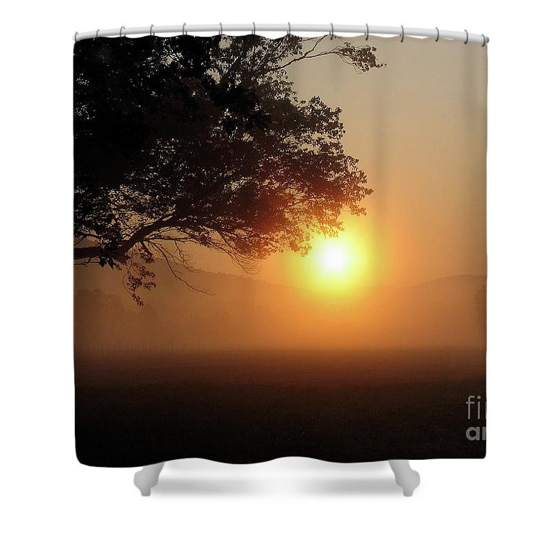 Trees Shower Curtain featuring the photograph Cades Cove Sunrise by Douglas Stucky