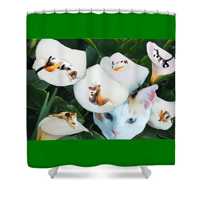 Cat Shower Curtain featuring the digital art Cala in Callas by Lisa Yount