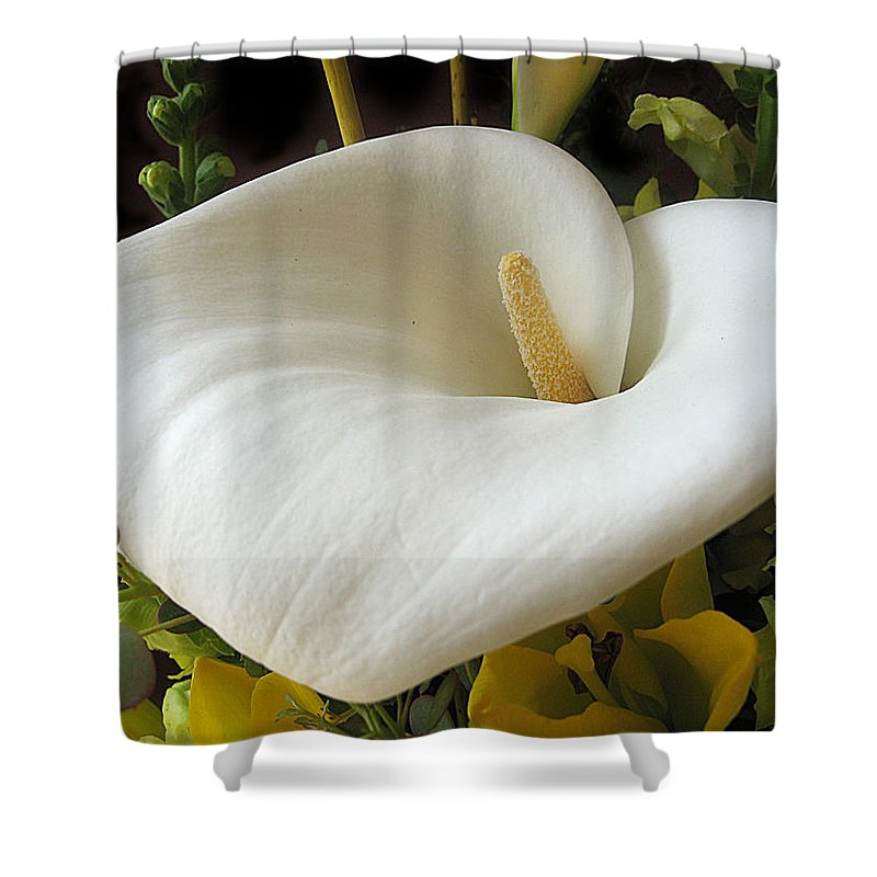Flower Shower Curtain featuring the photograph Calla by Jessica Jenney
