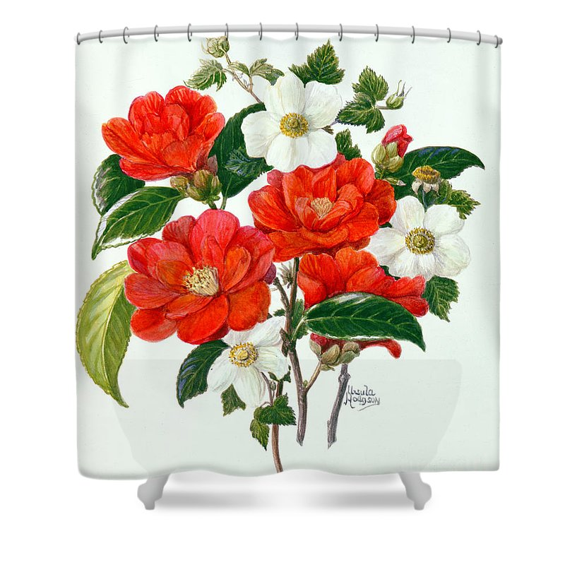 Rubus Tridel; South American; Japonica; Flower; Flowers; Red; White Shower Curtain featuring the painting Camellia Adolf Audusson by Ursula Hodgson
