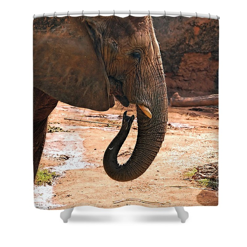 Elephant Shower Curtain featuring the photograph Camouflaged Elephant by Kathleen K Parker