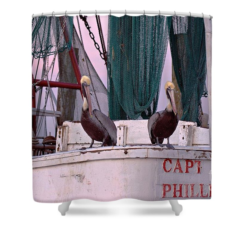 Pelicans Shower Curtain featuring the photograph Captain Phillips And First Mate by Benanne Stiens