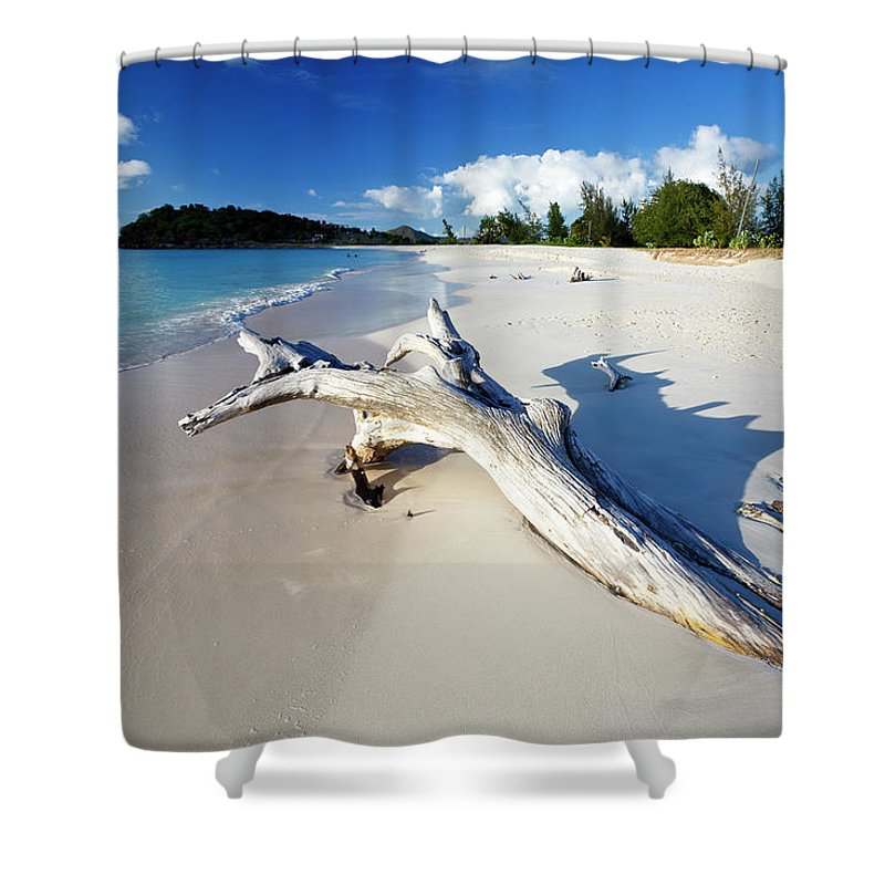 Water's Edge Shower Curtain featuring the photograph Caribbean Beach With Driftwood by Michaelutech