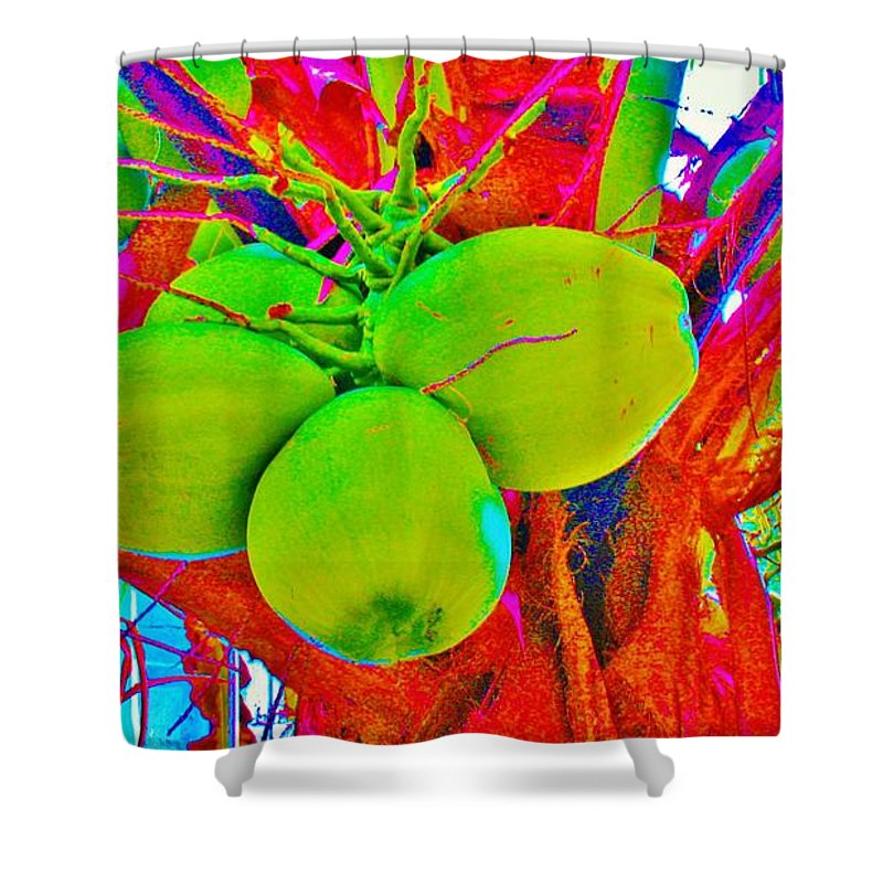Kerisart Shower Curtain featuring the photograph Carmen's Coconuts by Keri West