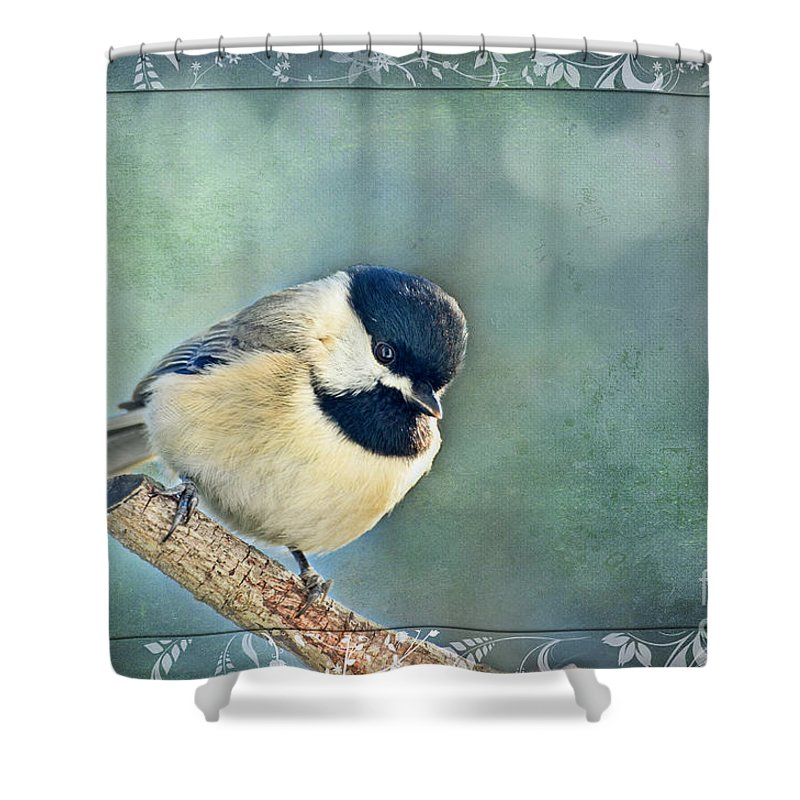 Nature Shower Curtain featuring the photograph Carolina Chickadee With Decorative Frame I by Debbie Portwood