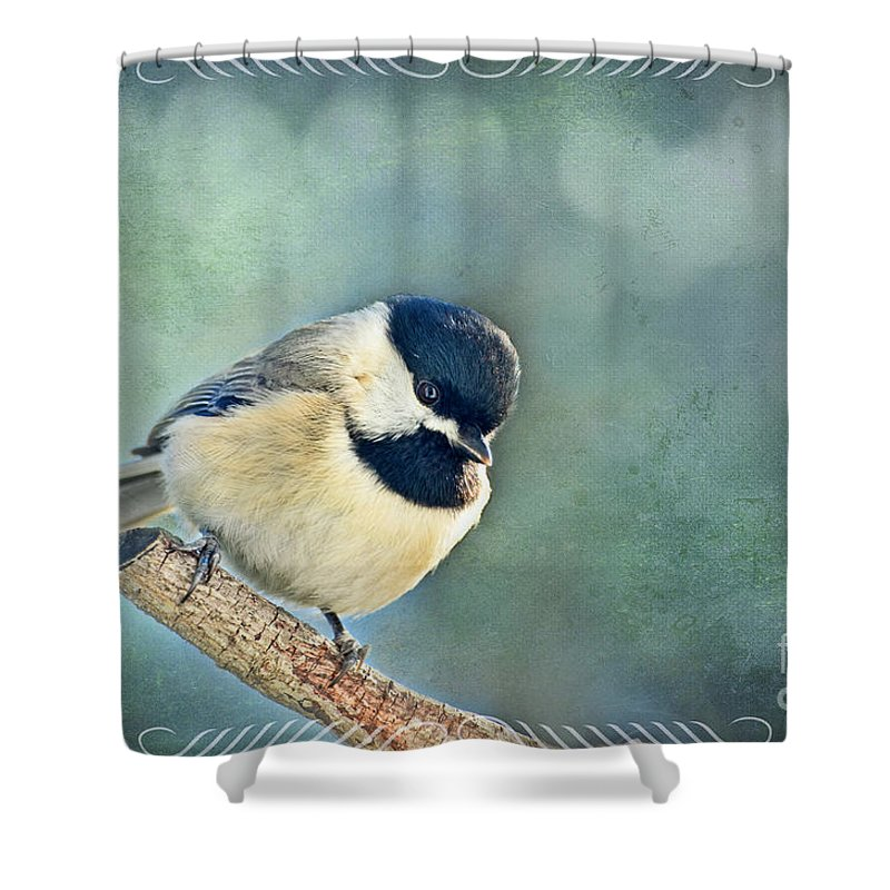 Nature Shower Curtain featuring the photograph Carolina Chickadee With Decorative Frame II by Debbie Portwood