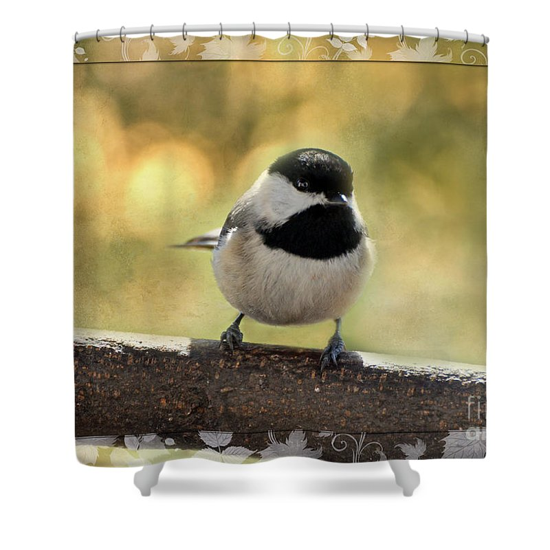 Nature Shower Curtain featuring the photograph Carolina Chickadee With Decorative Frame IIi by Debbie Portwood