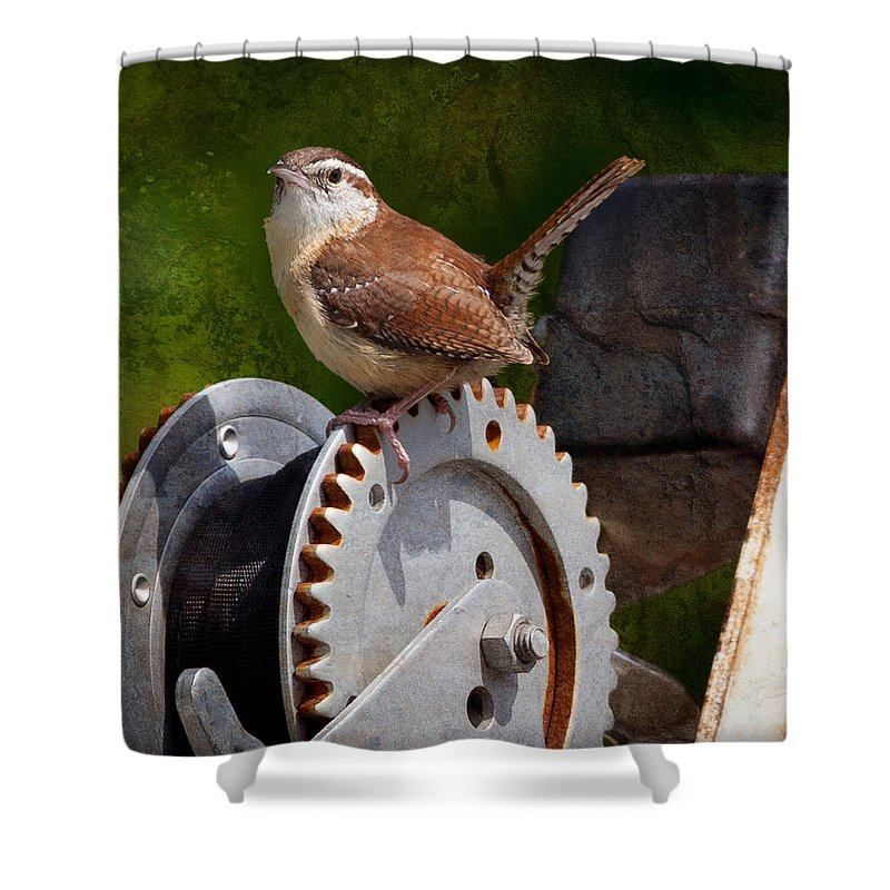 Carolina Wren Shower Curtain featuring the photograph Carolina Wren by Melinda Fawver
