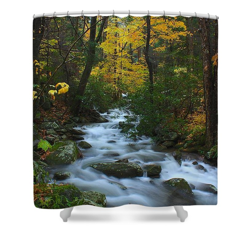 Smoky Mountains Shower Curtain featuring the photograph Cascades On The Motor Nature Trail by Nunweiler Photography