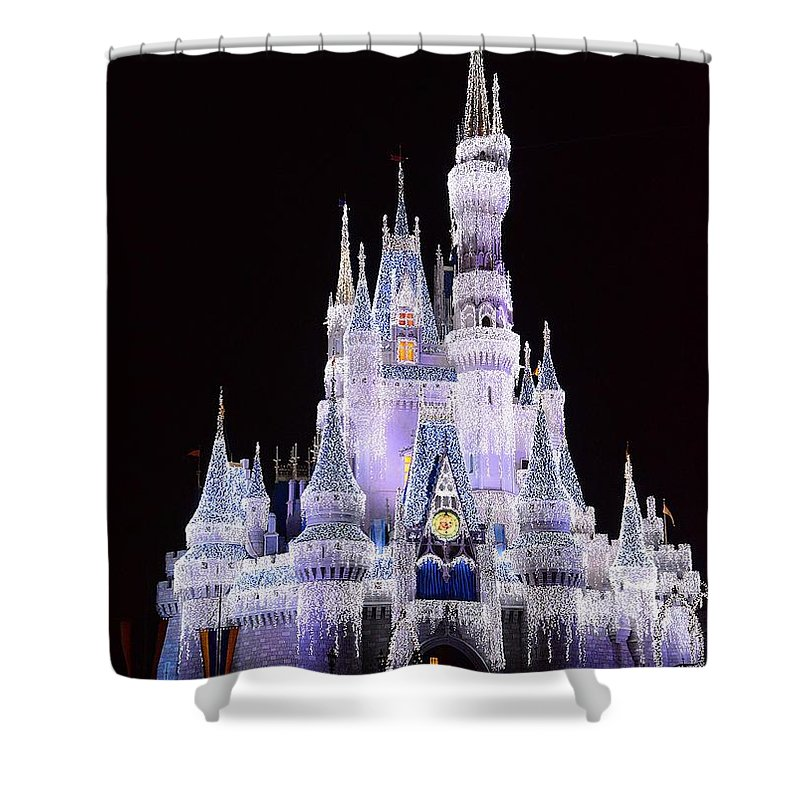 Castle Shower Curtain featuring the photograph Castle In Winter by Cindy Manero