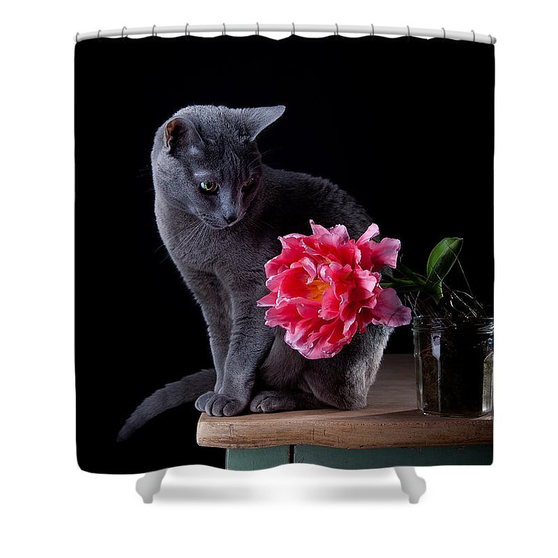 Purebred Shower Curtains
