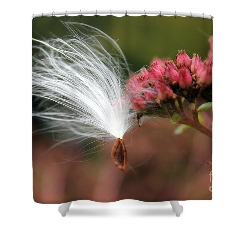 Shower Curtain featuring the photograph Caught In Flight by Renee Croushore