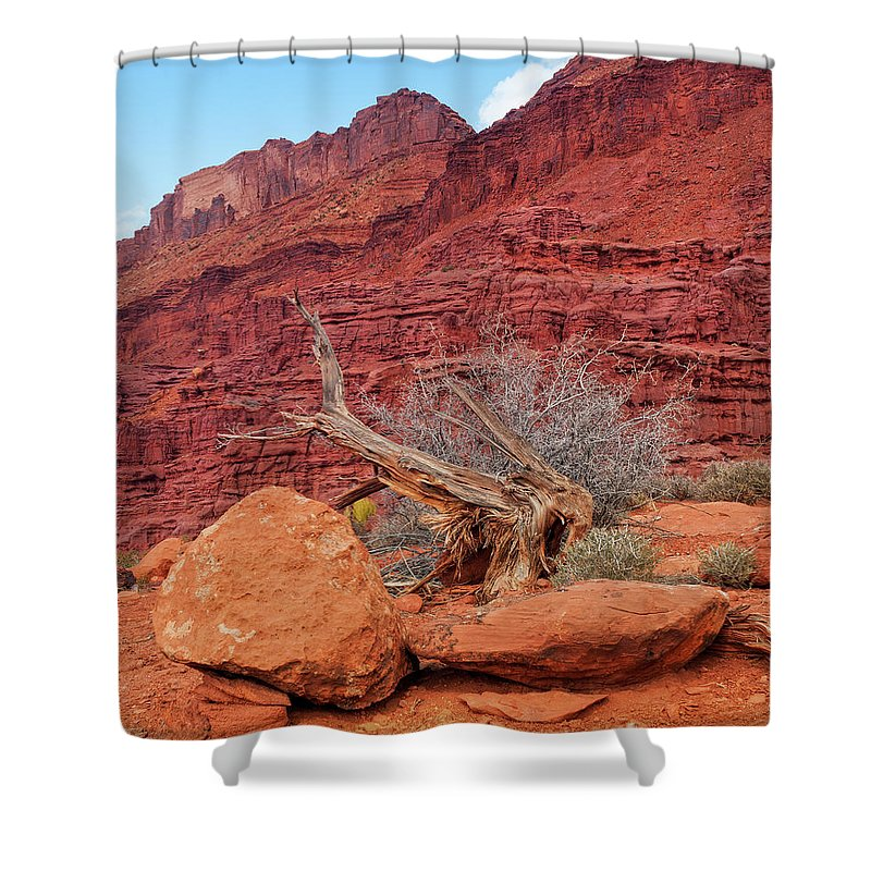 Cedar Tree Shower Curtain featuring the photograph Cedar Wood Tree, Fisher Towers, Moab by Fotomonkee