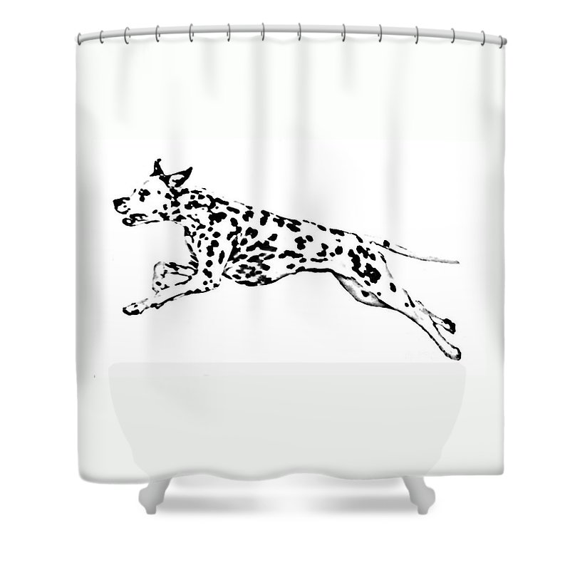 Dogs Shower Curtain featuring the drawing Celebrate by Jacki McGovern