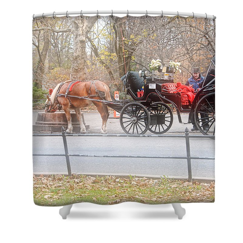 Horse Shower Curtain featuring the photograph Taking A Break by Dyle  Warren