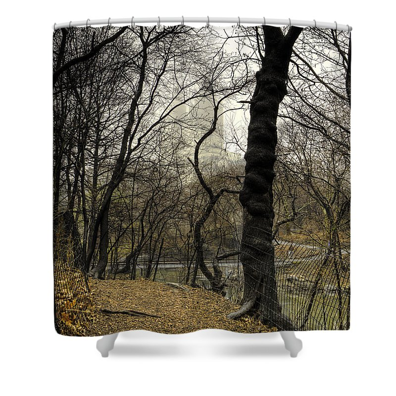 Central Park Shower Curtain featuring the photograph Central Park Rainy Day Number Three by Kenneth Ortiz