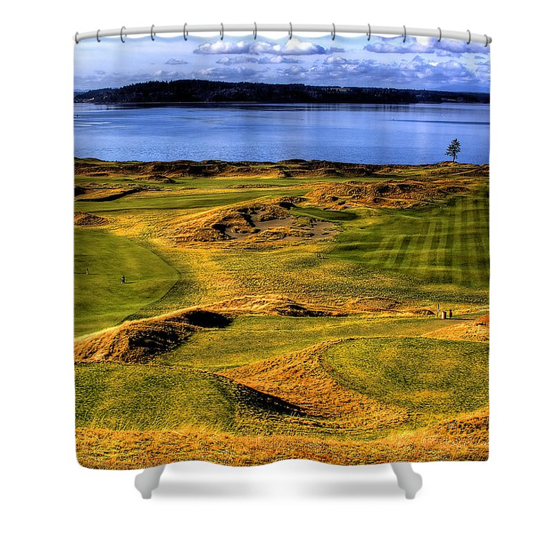 Chambers Bay Golf Course Shower Curtain featuring the photograph Chambers Bay Lone Tree by David Patterson