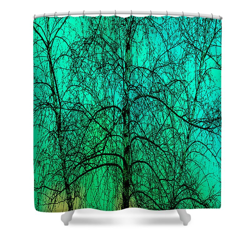 Abstract Shower Curtain featuring the photograph Change Of Seasons by Bob Orsillo