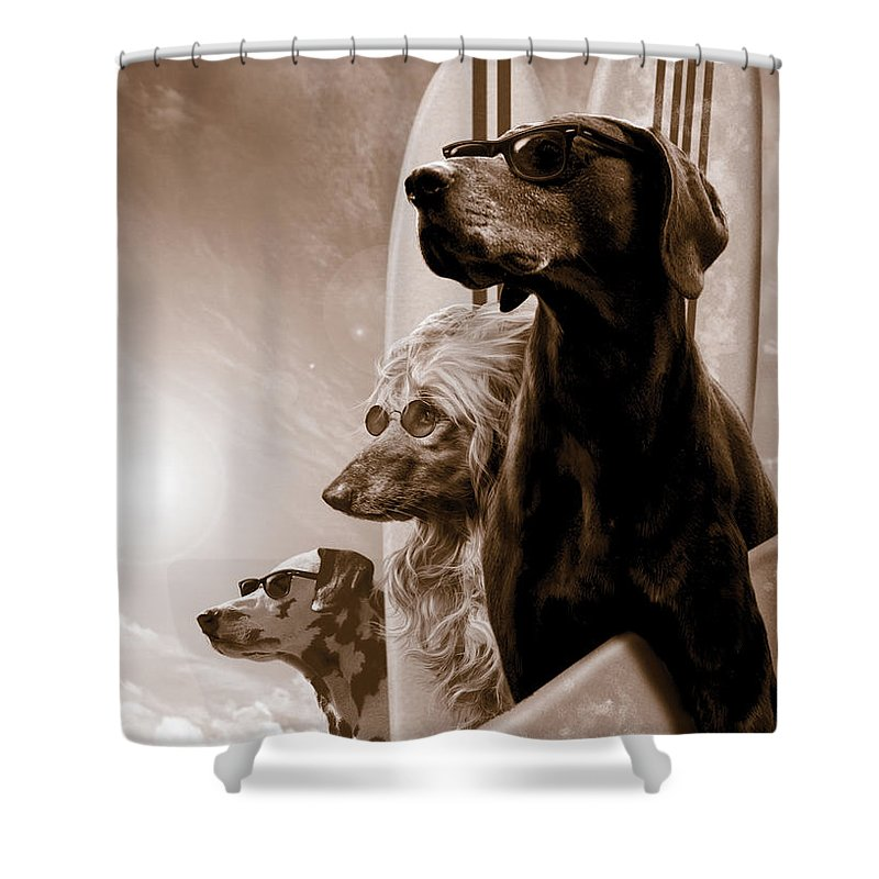 Dog Beach Shower Curtains
