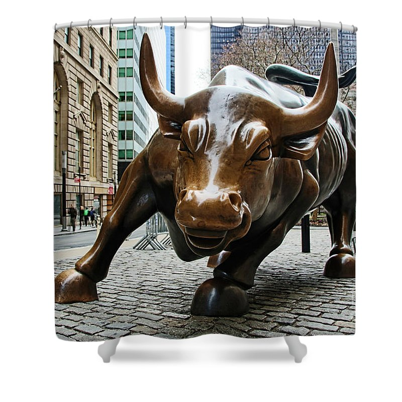 Wall Street Bull Shower Curtain featuring the photograph Charging Bull 1 by Nishanth Gopinathan
