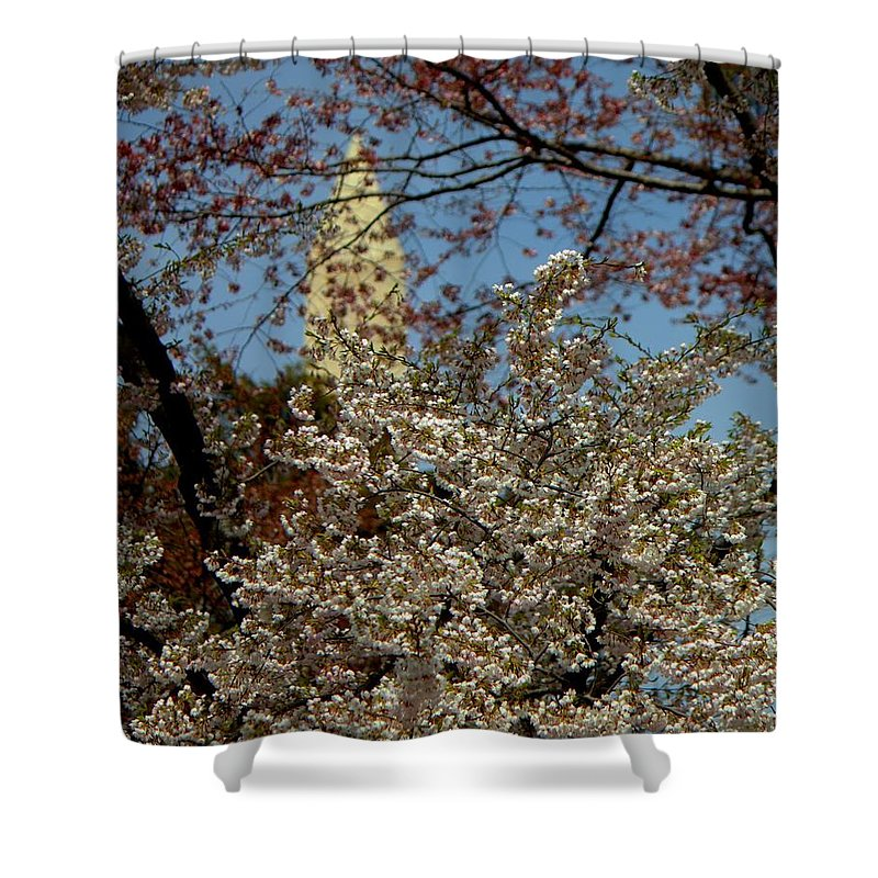 Cherry Shower Curtain featuring the photograph Cherry Blossoms And The Monument by John Feiser