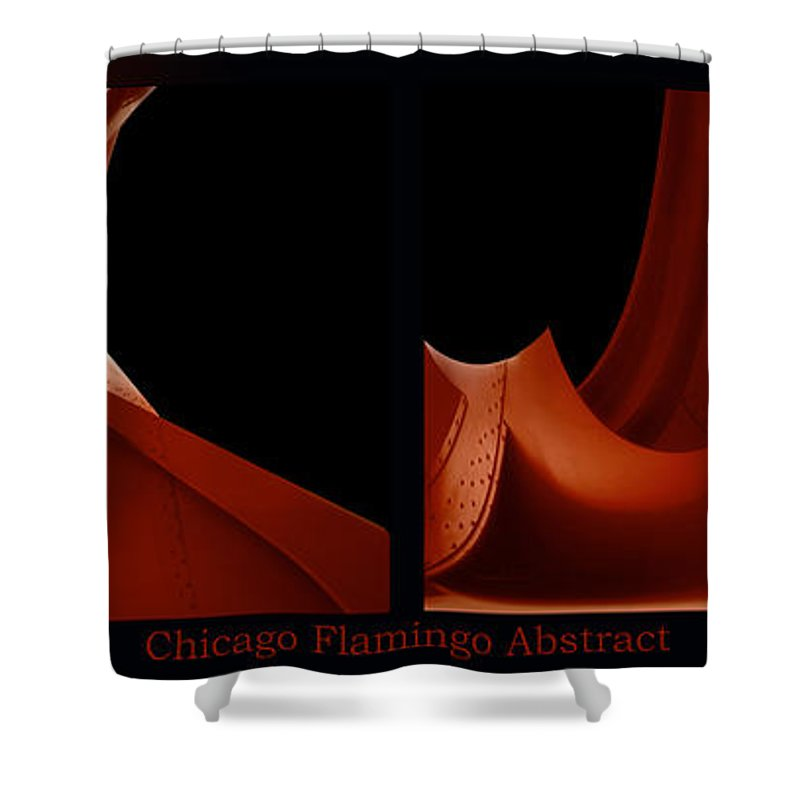 Chicago Shower Curtain featuring the photograph Chicago Flamingo Abstract 2 Panel 02 by Thomas Woolworth