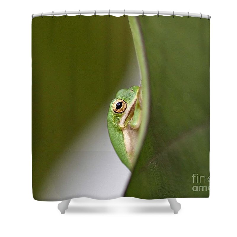 Nature Shower Curtain featuring the photograph Chillin by Scott Pellegrin