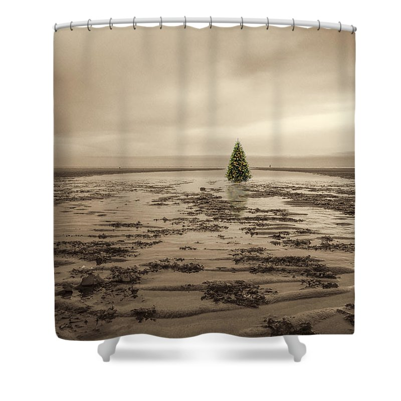 Crane Beach Shower Curtain featuring the photograph Christmas On The Bar by David Stone