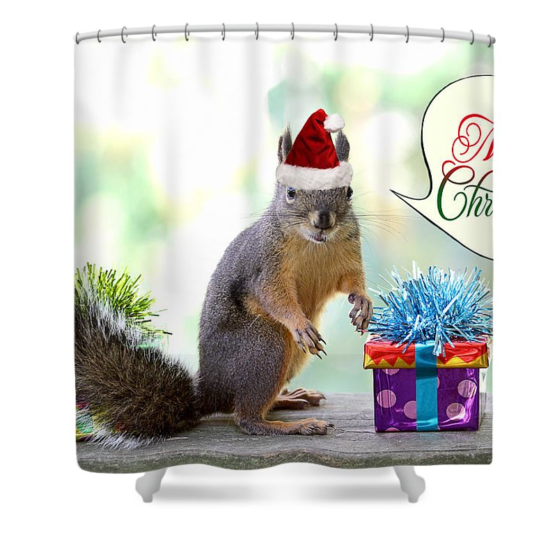 Squirrels Shower Curtain Featuring The Photograph Christmas Squirrel By Peggy Collins