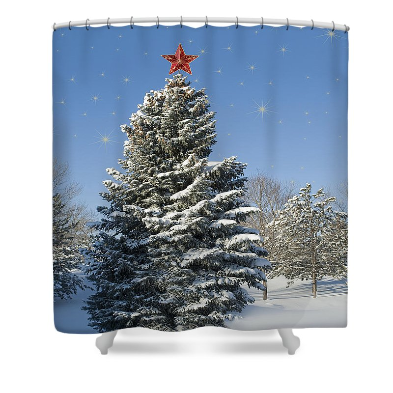 Landscape Shower Curtain featuring the photograph Christmas Tree by Juli Scalzi
