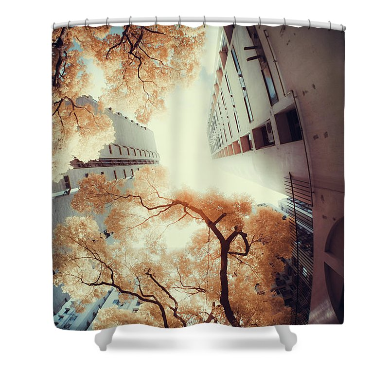 Tranquility Shower Curtain featuring the photograph City In Harmony With Nature by D3sign