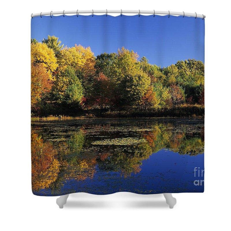 Fall Shower Curtain featuring the photograph Clark Pond - Auburn New Hampshire by Erin Paul Donovan
