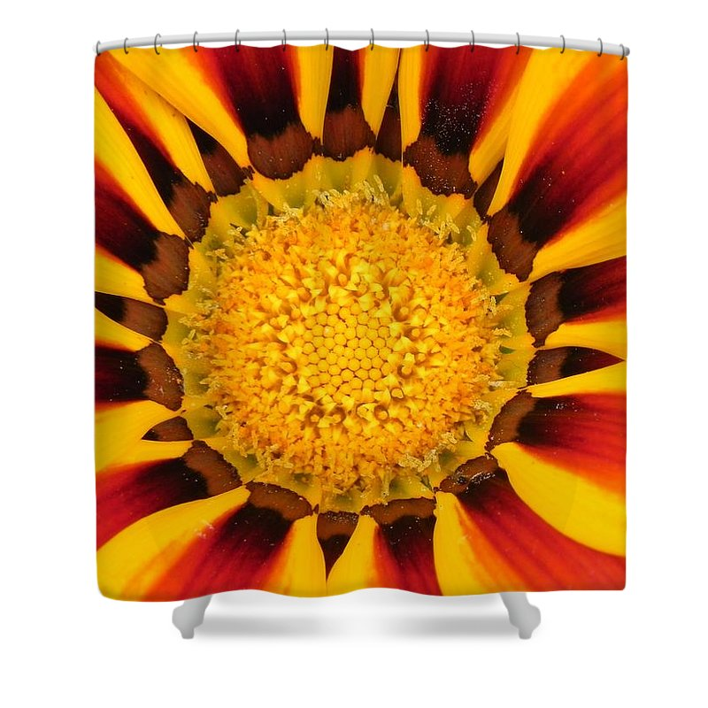 Flower Shower Curtain featuring the photograph Close Up Marigold by FL collection