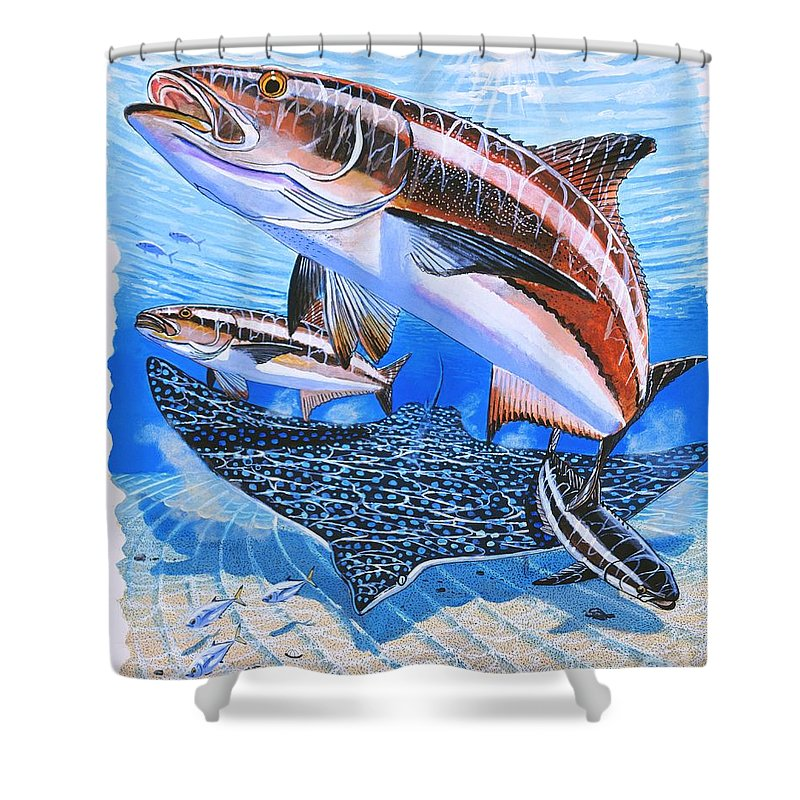 Cobia Shower Curtain featuring the painting Cobia On Rays by Carey Chen