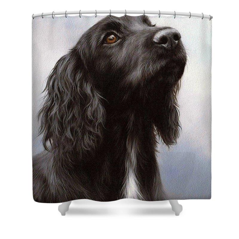Cocker Spaniel Shower Curtains