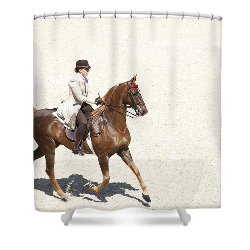 Saddlebred Shower Curtain featuring the photograph Coffee Saddlebred by Alice Gipson