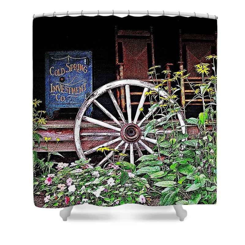 Safe Shower Curtain featuring the photograph Cold Springs Safe by Nick Zelinsky