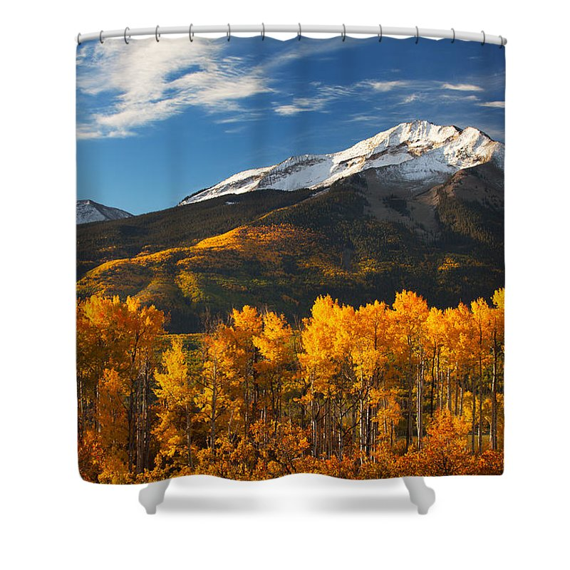 Aspen Shower Curtain featuring the photograph Colorado Gold by Darren White