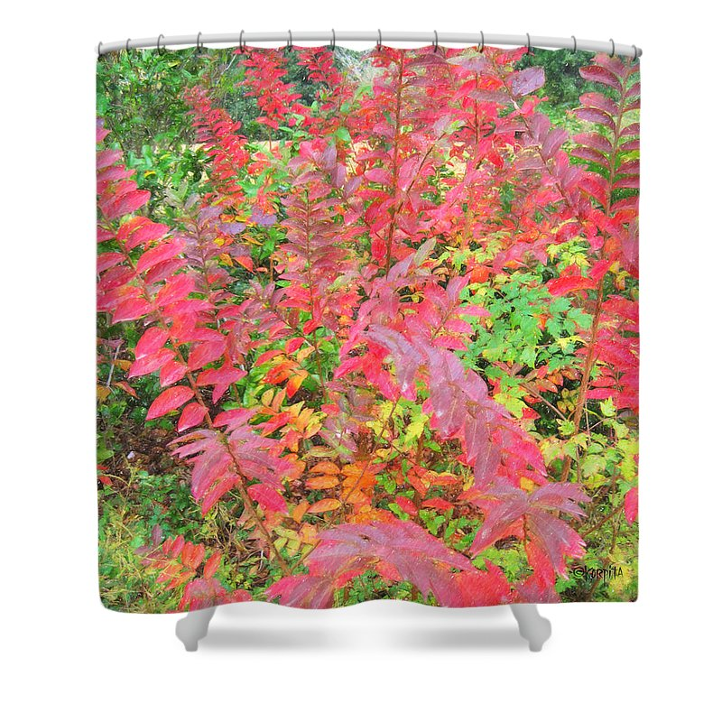 Colorful Fall Leaves Shower Curtain featuring the photograph Colorful Fall Leaves Autumn Crepe Myrtle by Rebecca Korpita