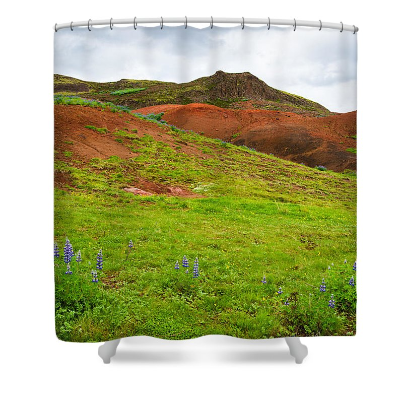 Iceland Shower Curtain featuring the photograph Colorful Iceland Landscape With Green Orange Brown Tones by Matthias Hauser