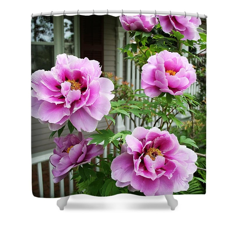 Flowers Shower Curtain featuring the photograph Come Stay A While by Barbara McMahon