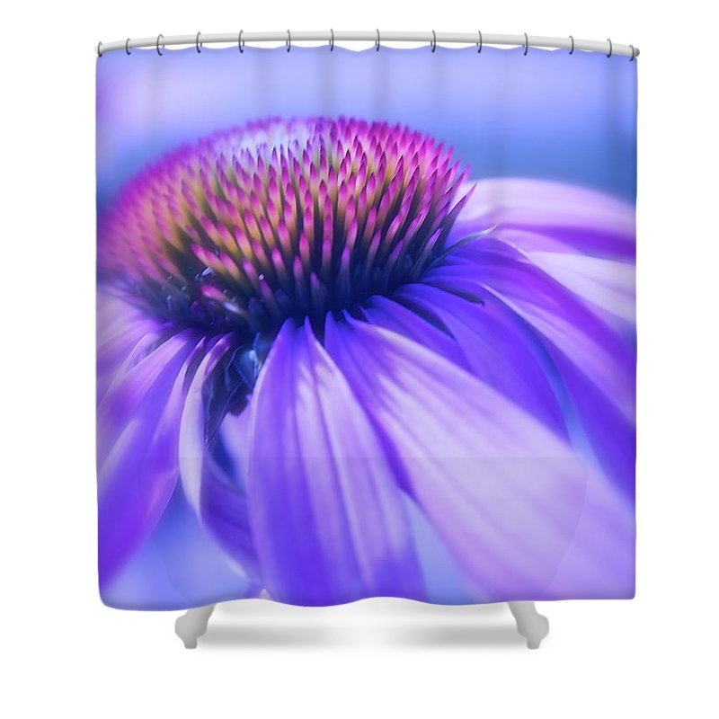 Flower Shower Curtain featuring the photograph Cone Flower In Pastels by Linda Bianic