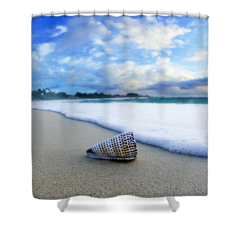 At The Beach Shower Curtain featuring the photograph Cone Foam by Sean Davey