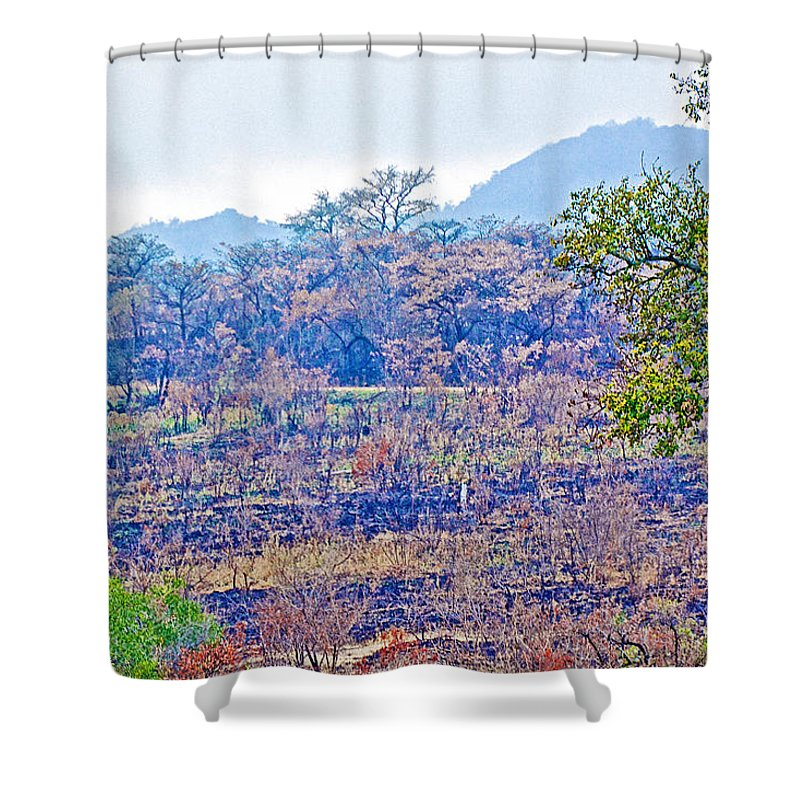 Controlled Burn Area In Kruger National Park Shower Curtain featuring the photograph Controlled Burn Area In Kruger National Park-south Africa by Ruth Hager